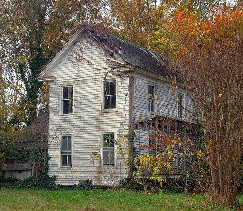 Autumn In Nixonton NC