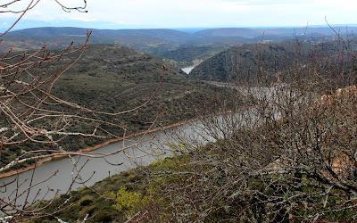 Vistas desde el mirador del Serrano. Parque Nacional de Monfragüe