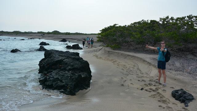 Urbina Bay Galapagos beach