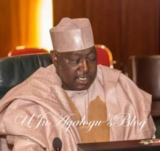 More Shocking Dirty Deals Of SGF Babchir EXPOSED, How He Spent Another N200m As Consultancy Fee For Grass Cutting