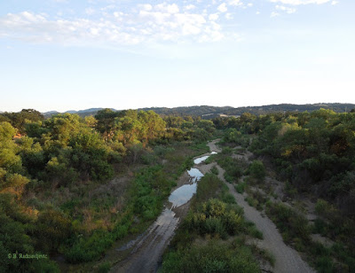Looking Down at the Salinas River to the South, on Vineyard Dr., © B. Radisavljevic