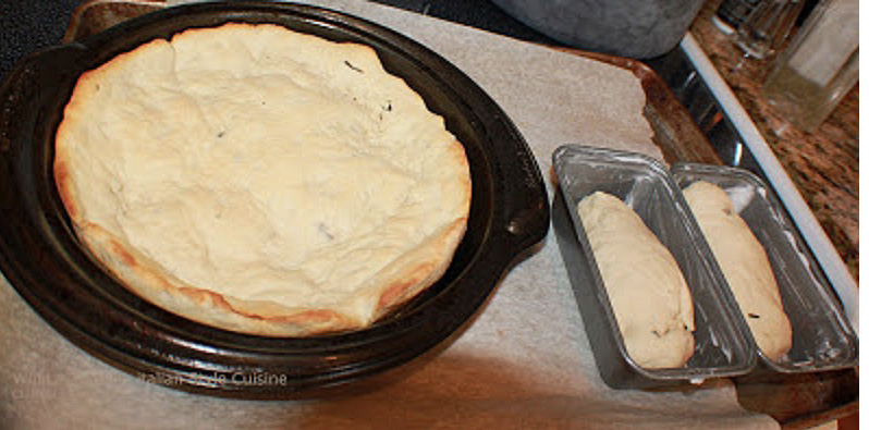 this is a potato herb bread with  potatoes as a base in the bread with herbs bread perfect for rolls, pizza and much more