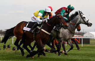 top 5 cheltenham horses