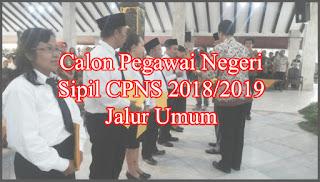 Calon PNS 2018 2019