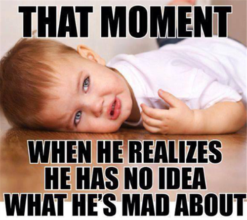 toddler tantrum meme