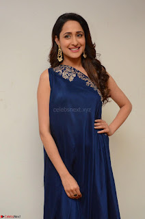 Pragya Jaiswal in beautiful Blue Gown Spicy Latest Pics February 2017 057.JPG