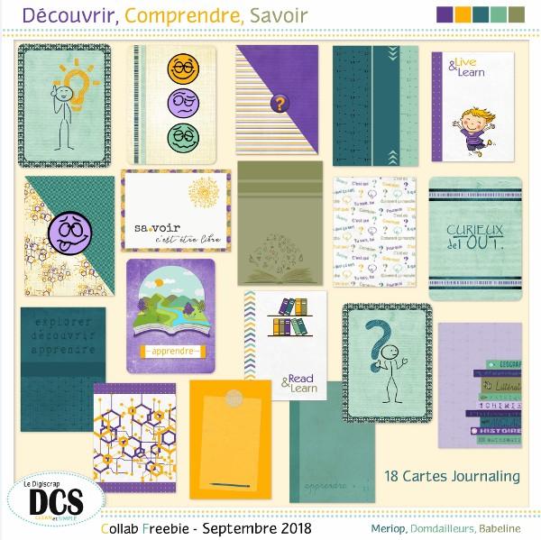 Découvrir, Comprendre, Savoir : les Cartes Journaling