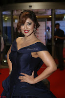 Payal Ghosh aka Harika in Dark Blue Deep Neck Sleeveless Gown at 64th Jio Filmfare Awards South 2017 ~  Exclusive 071.JPG
