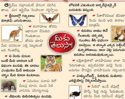 AMAZING FACTS ABOUT ANIMALS AND WILD LIFE