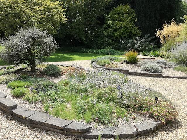suchy ogród w słońcu, murek z betonu