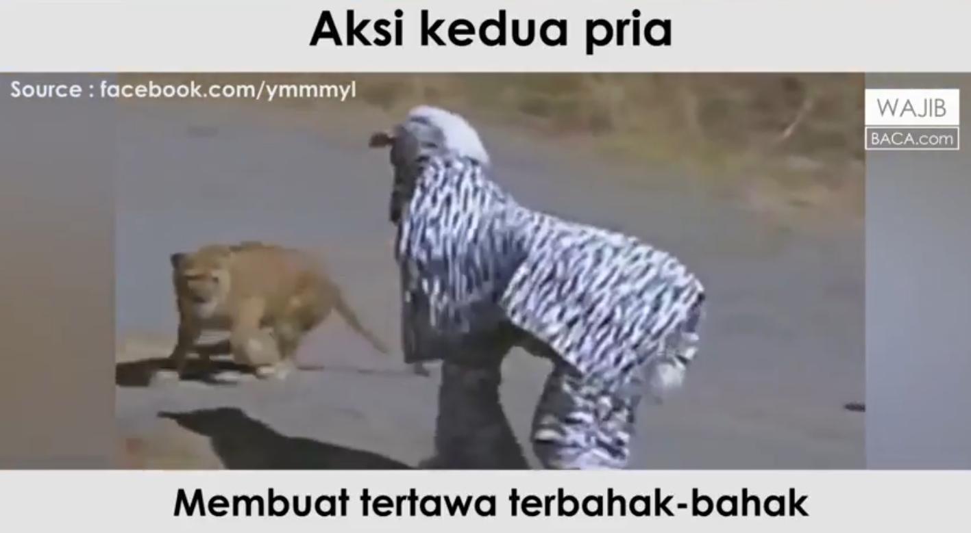Asli Ngakak Beginilah Aksi Konyol Dua Orang Berkostum Zebra