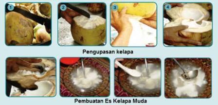 pembuatan es kelapa muda