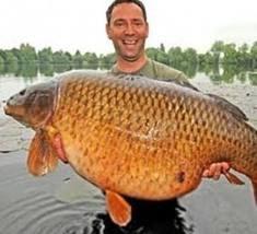 Seputar Dunia Memberi Probiotik Agar Ikan Cepat Besar
