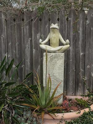 value_as_a_healer_frog