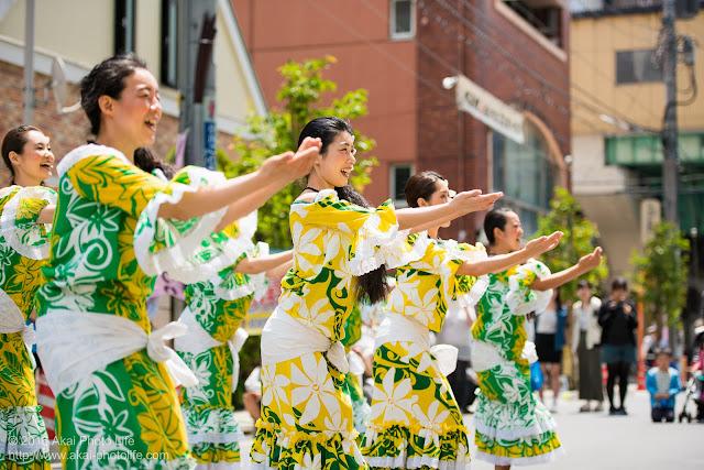 マロニエ祭り、カハレフラ&タヒチスタジオの写真 1