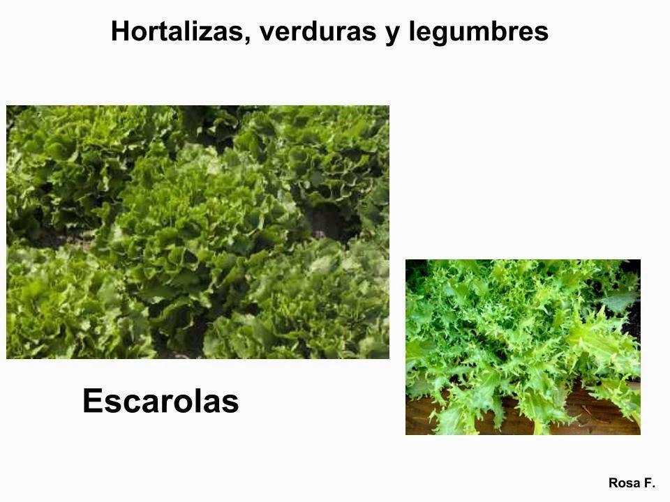 Maestra de Primaria Hortalizas verduras y legumbres para