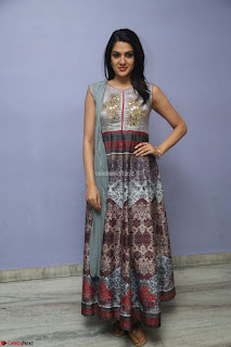 Sakshi Chaudhary Beautiful Emroidery Work Sleeveless Anarkali Dress 065.JPG