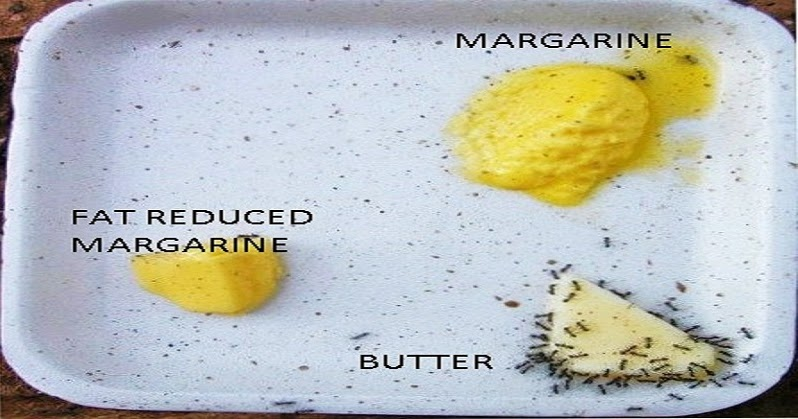 BUTTER IS GOOD FOR YOU. MARGARINE IS NOT !