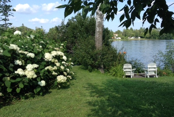 Rideau River from our front lawn