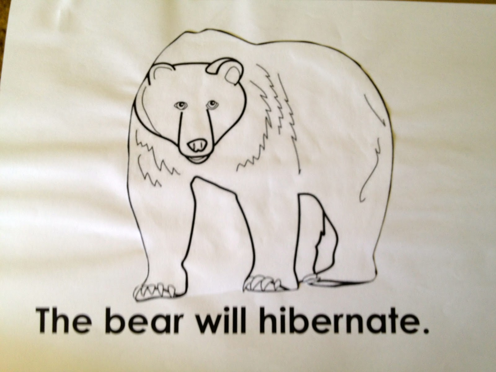 Oceans Of Kindergarten Fun Hibernation Books Past And