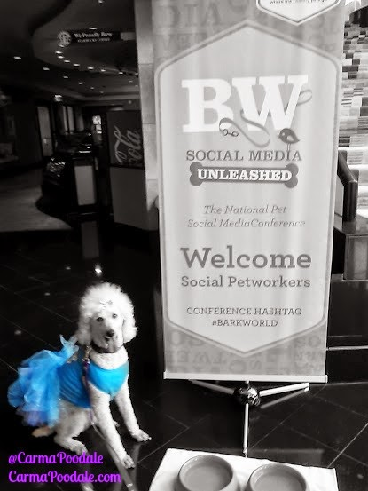 Barkworld Pet Conference sign and poodale