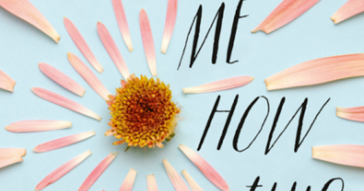Review: Remind Me How This Ends by Gabrielle Tozer - More than just a 'boy meets girl'