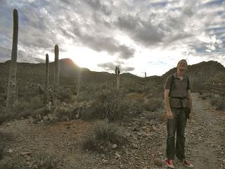 hiking in saguaro national park west side tucson