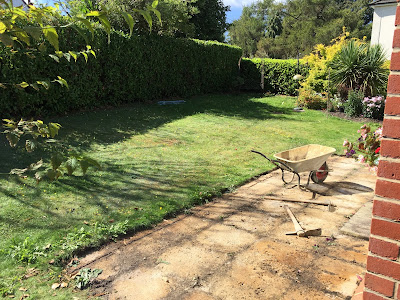 Before photo of garden Ashtead, Surrey
