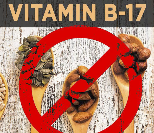 ما حقيقة فيتامين ب17 والسرطان ؟ - التغذية السليمة واكثر!