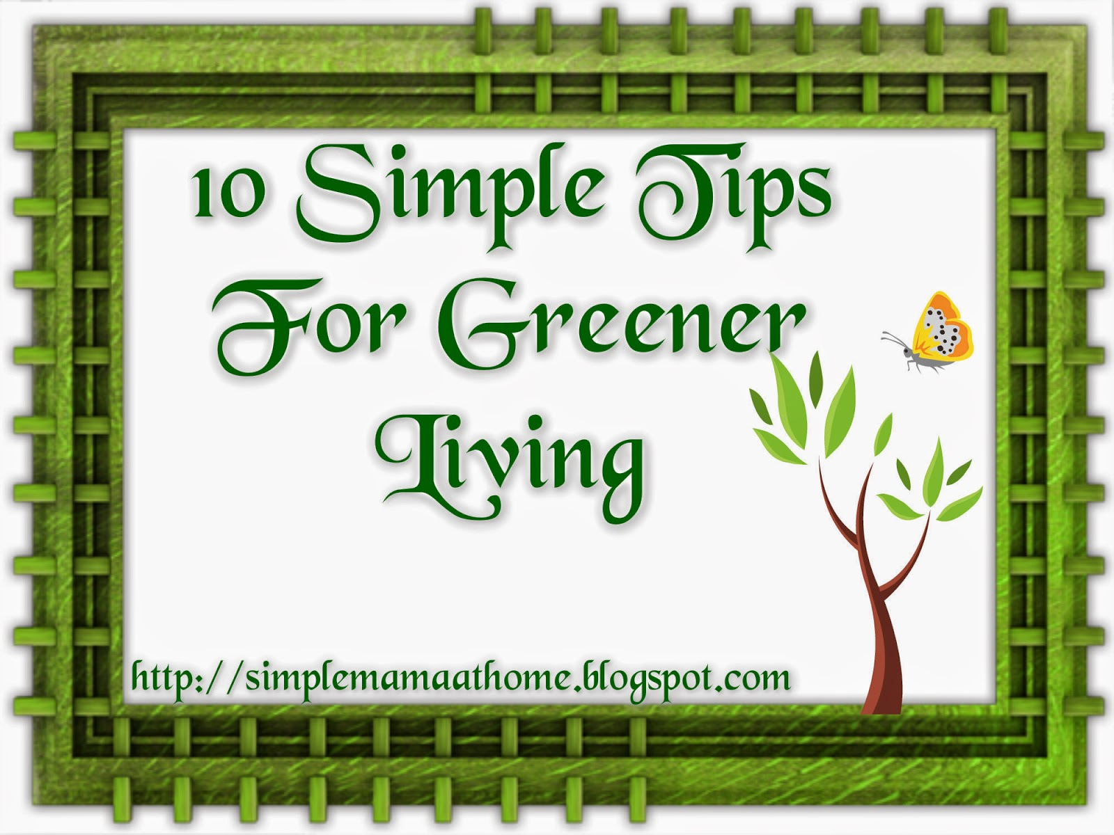 10 Simple Tips For Greener Living