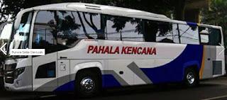 bus pahala kencana putih
