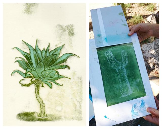 monotype monotipio monoprint sketch skizze kaktus cactus