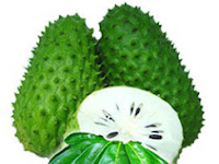 Soursop Leaf For Health Benefits