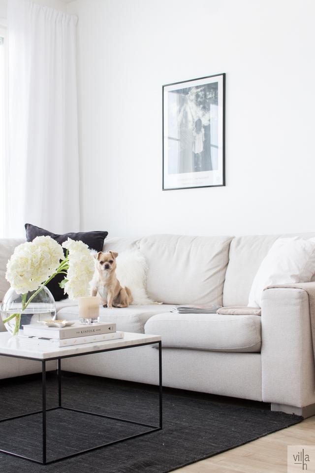 hay, marmori, sohvapöytä, interior, olohuone