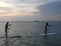 Stand Up Paddle with surfschool-srilanka