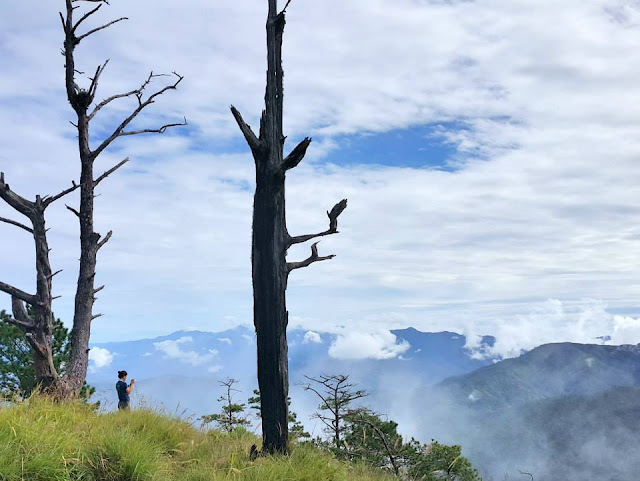 Mt. Ugo