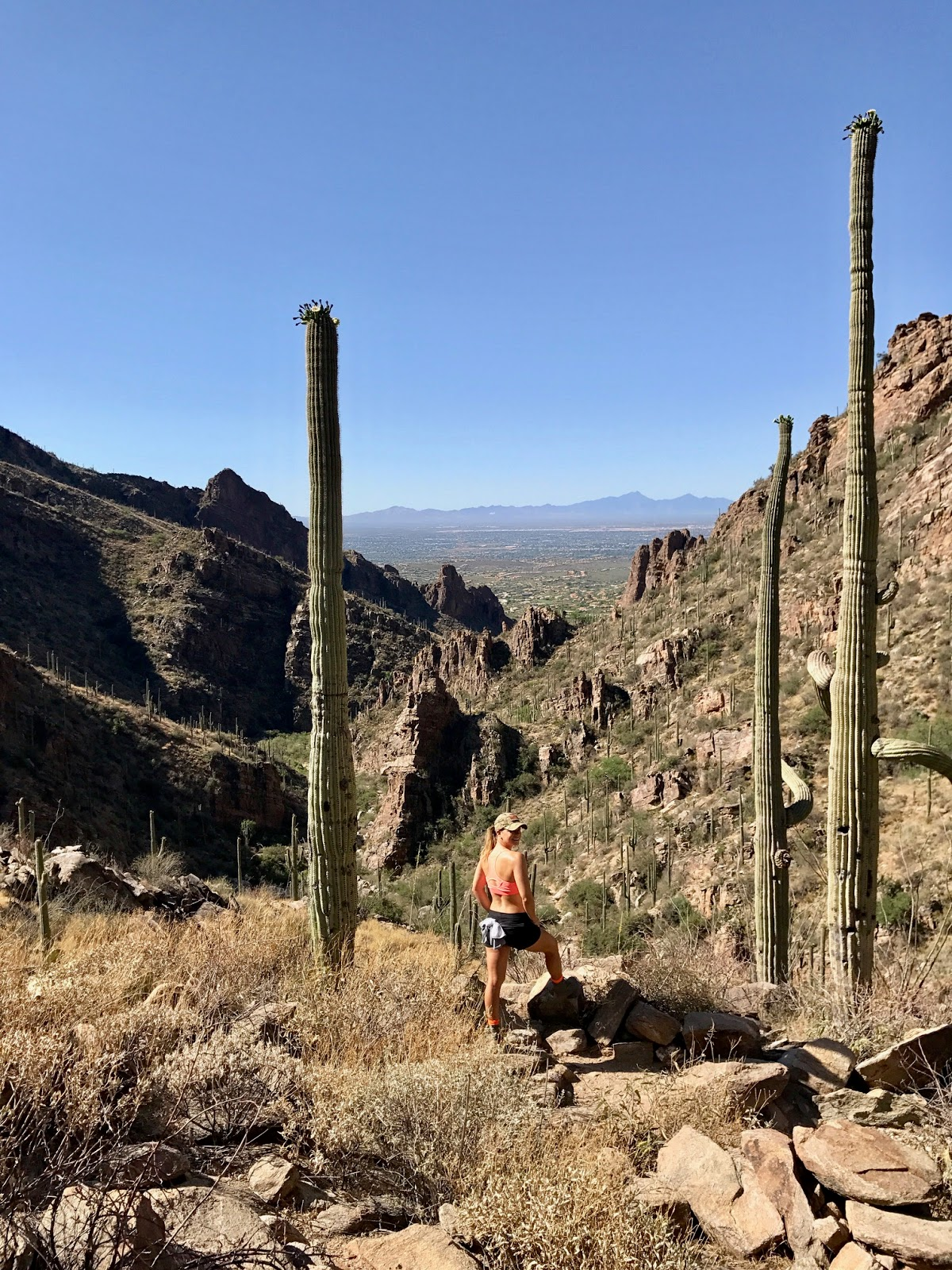 Ventana Canyon Trail, Tanque Verde Arizona, Loews Ventana Canyon