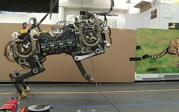 الكشف عن روبوت Cheetah القادر على الحركة من دون أنظمة رؤية