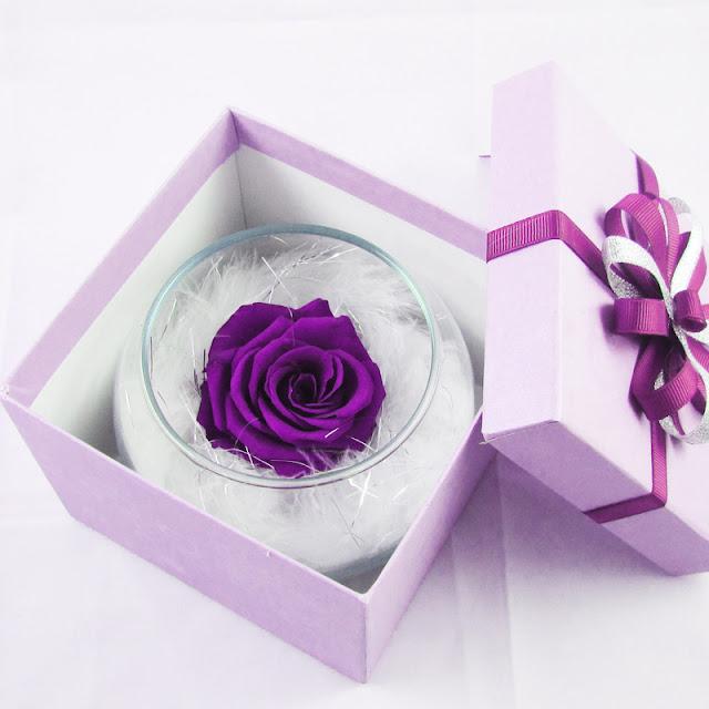 Lọ hoa hồng bất tử