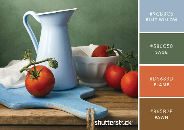 Những kết hợp màu sắc đầy cảm hứng sưu tầm từ Shutterstock, in Hồng Hạc