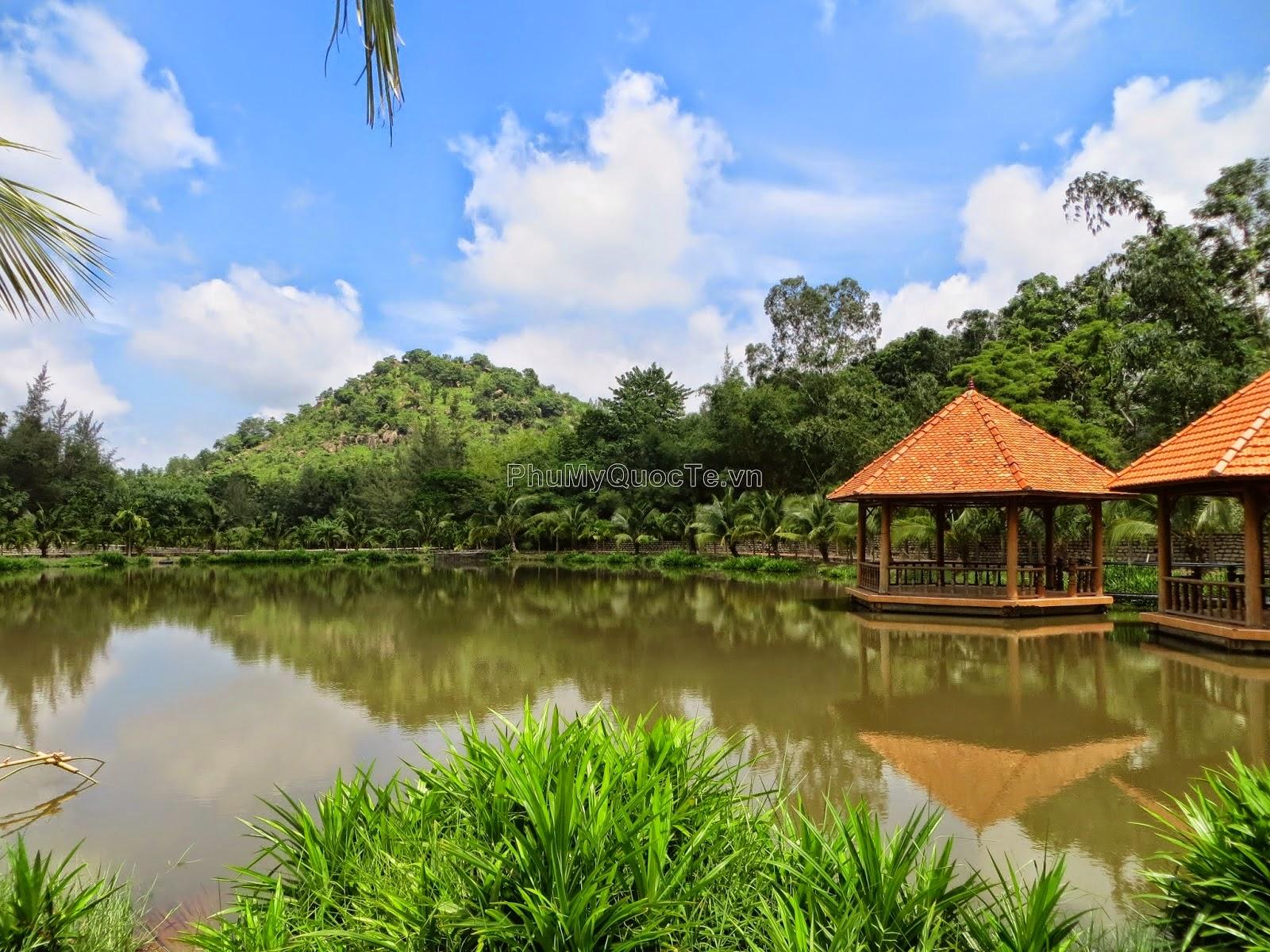 Nhà nổi được thiết kế độc đáo dọc theo hồ nước