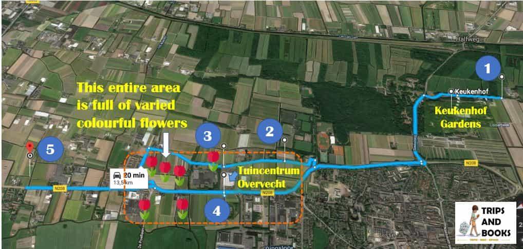 How to see tulip fields around Keukenhof (exact GPS locations ... Keukenhof Holland Map on netherlands holland map, giethoorn holland map, zeeland holland map, edam holland map, maastricht holland map, amersfoort holland map, scheveningen holland map, amsterdam holland map, arnhem holland map, rotterdam holland map, europe holland map, leiden holland map, utrecht holland map, nijmegen holland map, hillegom holland map, eindhoven holland map, leeuwarden holland map, randstad holland map, delft holland map, haarlem holland map,