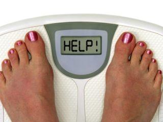 turunkan berat badan dengan mengatur pola makan, inilah alpukat pendukung program diet