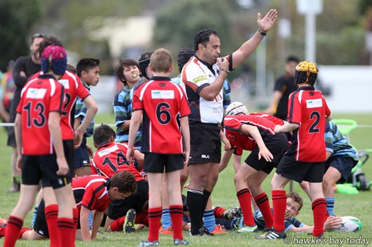 Anton Mou, referee, rules no try for Josef James, Napier East - Napier East beat Central Hawke's Bay 17-15, Wakely Shield rugby at Tareha Reserve, Guppy Rd, Taradale, Napier. photograph