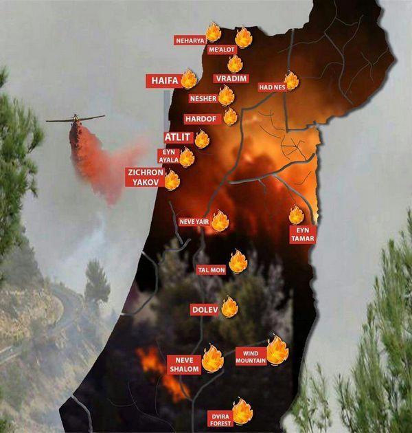 Kebakaran di Israel, Ratusan Orang di Ungsikan