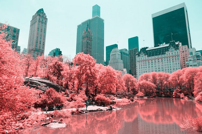 © Paolo Pettigiani | INFRARED NYC - Photography