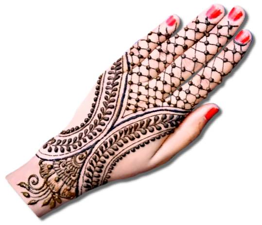 Full Back Hand Mehndi Designs