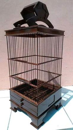 Harga Saat Ini Sangkar Burung Pleci Minimalis Terbaru Dan ...