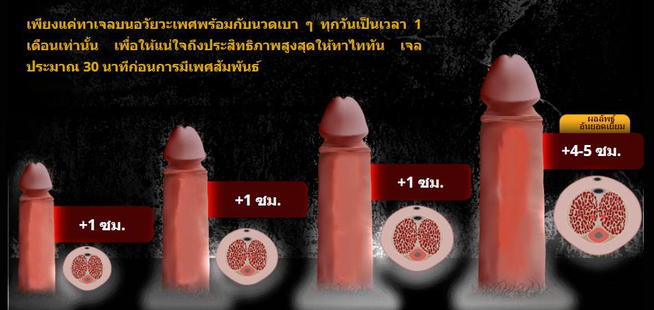 thailand titan gel