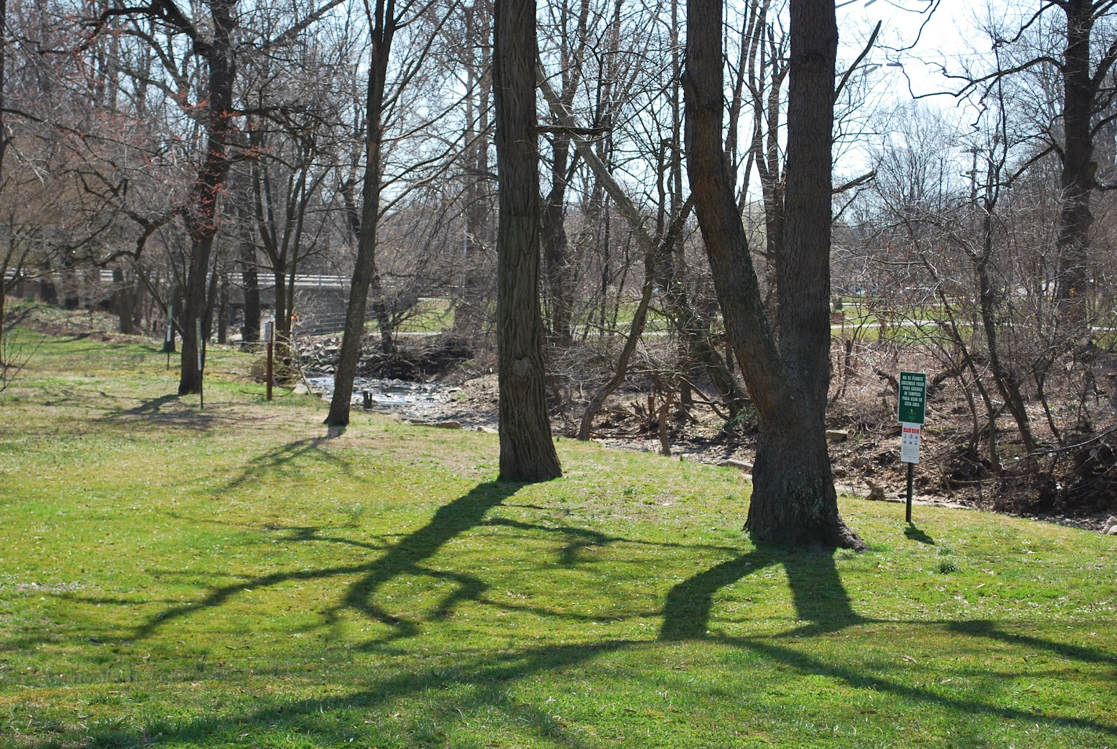 Quarry Shade Garden At Bon Air Park: The Next Best Thing.....: Bon Air Park In Arlington, VA